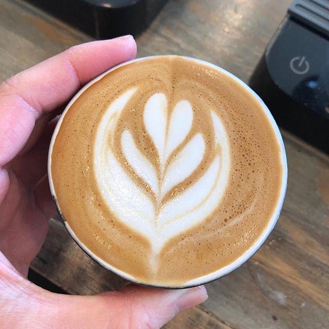 こんにちは。本日からespressoのコーヒー豆が、fourbarrel coffee で焙煎しているKenya ruiruiruに変わります!香りと酸味豊かな浅煎りシングルオリジンのエスプレッソは、ミルクの甘さにもよく合います!是非お召し上がりください。本日の営業時間は9:00〜21:00#サニーズコーヒー #自家焙煎#コーヒー #コーヒー屋 #コーヒー豆 #コーヒー豆専門店 #エスプレッソ #カプチーノ #カプチーノアート #ラテアート #ラテ #モカ #ホワイトモカ #アフォガード #ランチ #ステーキ #チキンソテー #ポークジンジャー #生パスタ #クラムチャウダー #栃木県 #大田原 #大田原カフェ #sunnyscoffee #coffee#espresso #cappuccino#latte #mocha #affogato